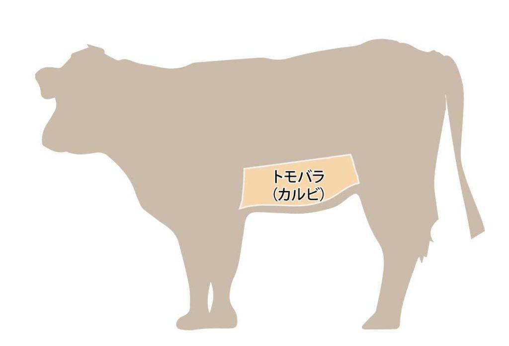 和牛の牛肉の部位 トモバラ