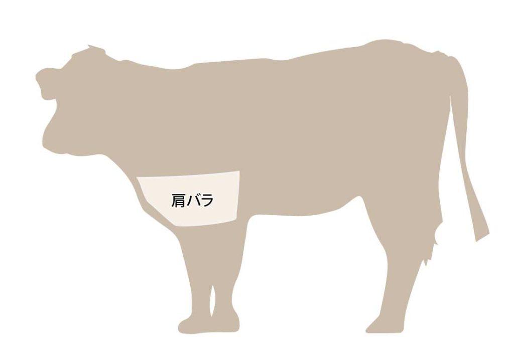 和牛の牛肉の部位 肩バラ