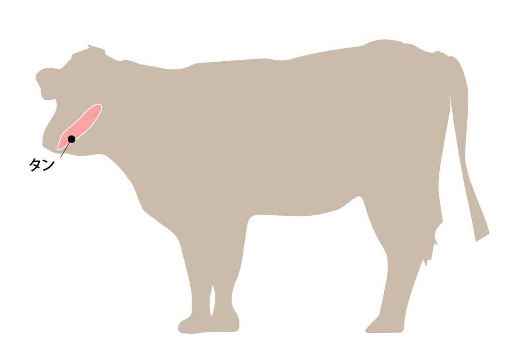 和牛の牛肉の部位 タン