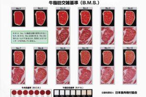 肉の格付けはどうやって決められているのか
