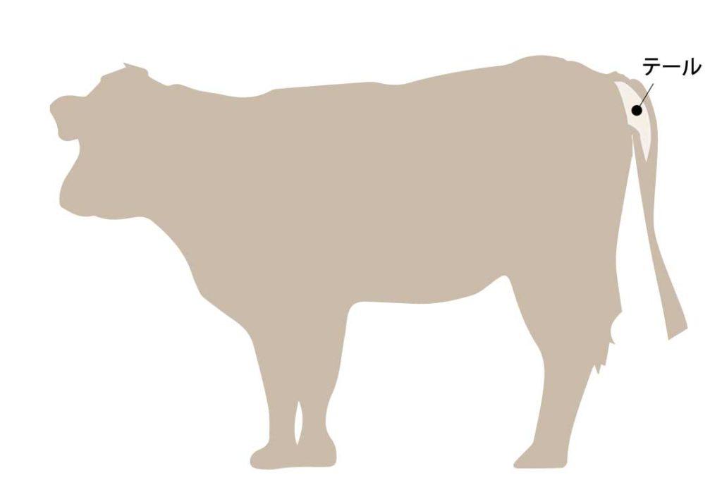 和牛の牛肉の部位 テール