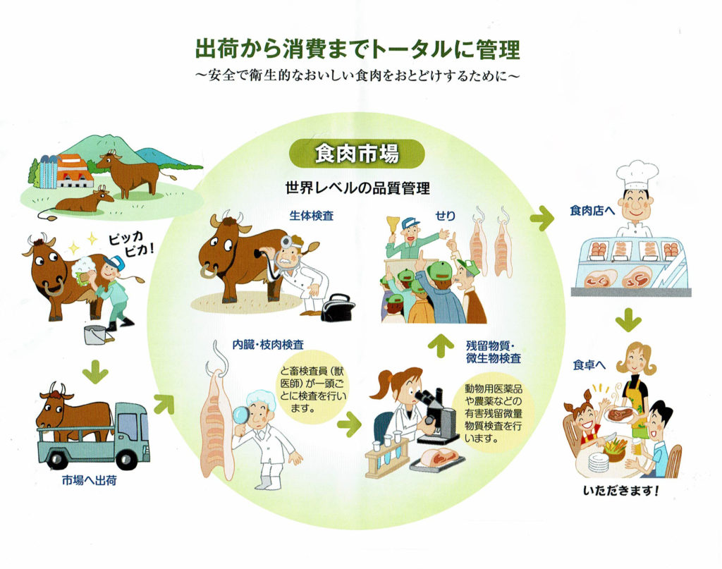 食肉市場の仕事説明図