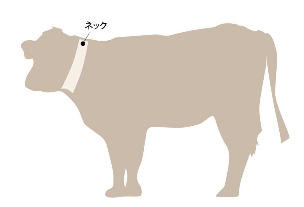 和牛の牛肉の部位 ネック