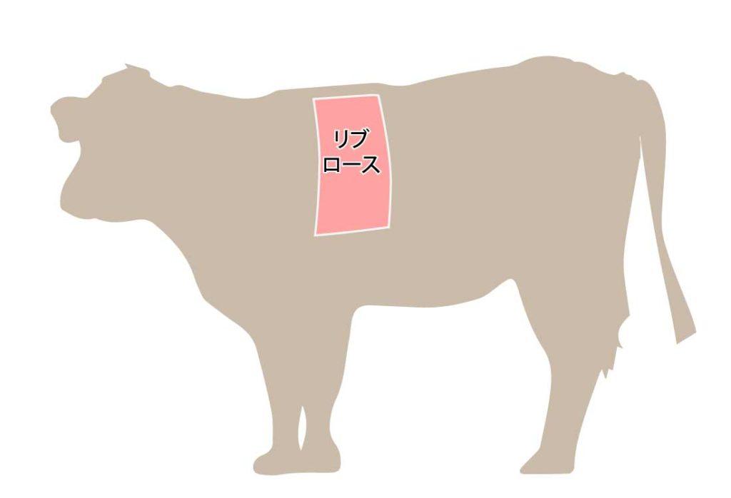 和牛の牛肉の部位 リブロース