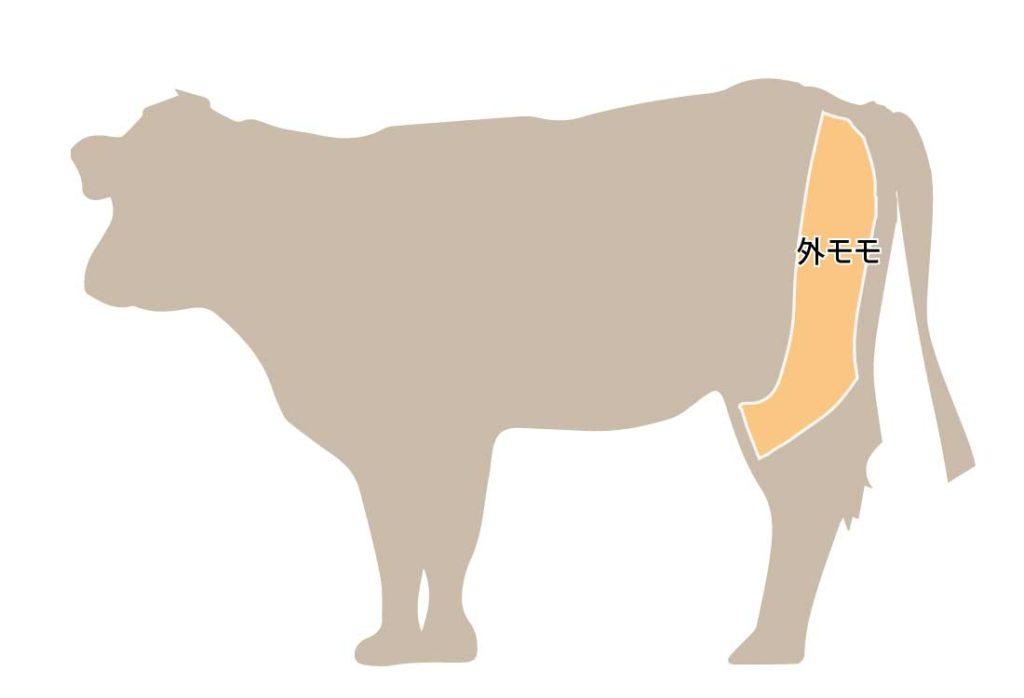 和牛の牛肉の部位 外モモ