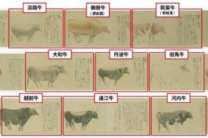 壱岐牛は昔から良い牛として定評がありました